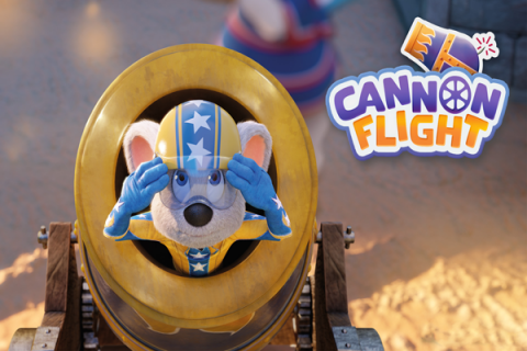 Cannon Flight