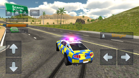 Police Car Driving: Police Chase