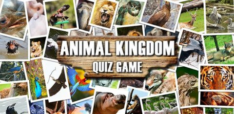 Animal Kingdom: Quiz Game